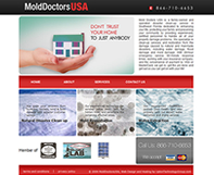 Mold Doctors Website Design