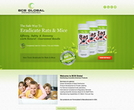 BCB Global Wordpress Website